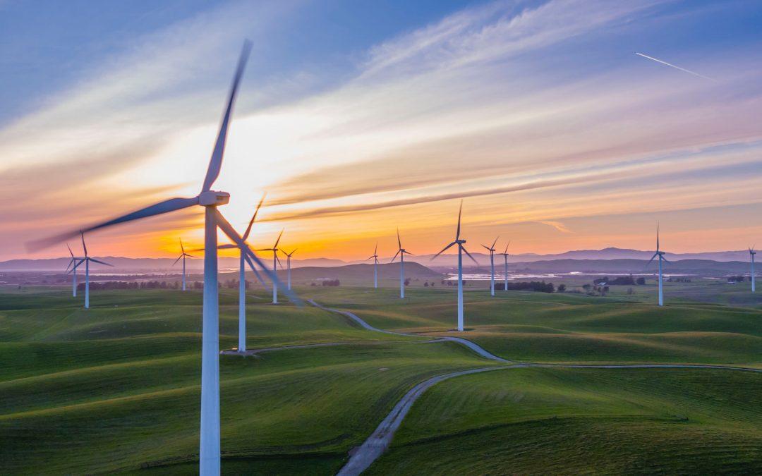 4 Practical Steps to Reach Your Net Zero Carbon Goal